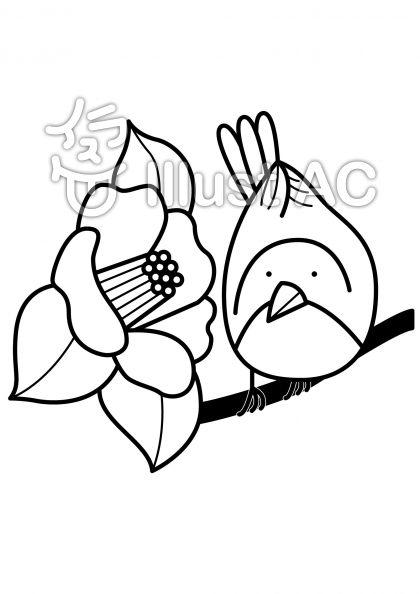 椿とウグイスの無料フリーイラスト素材白黒モノクロ