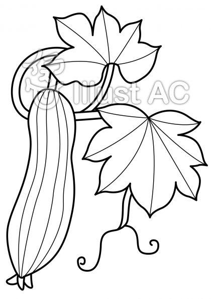 ヘチマの無料フリーイラスト素材白黒モノクロ